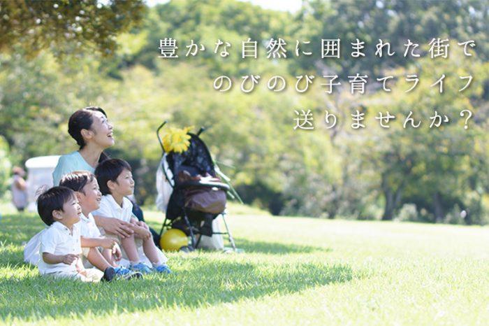 関津メインイメージ1