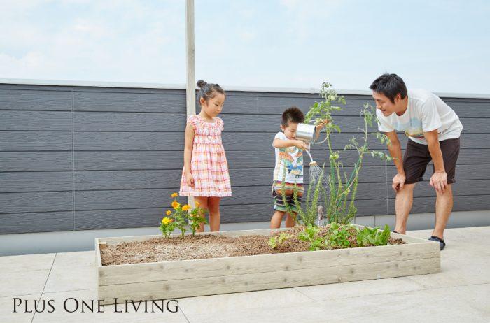 屋上庭園付住宅プラスワンリビング_家庭菜園イメージ_MG_0517